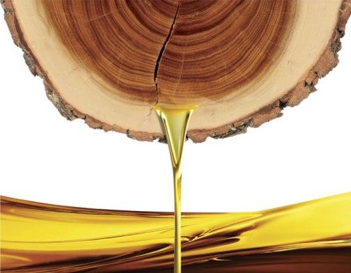 sandalwoods-science