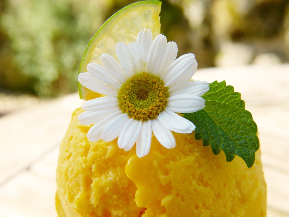 mango-ice-cream-2194057_1920